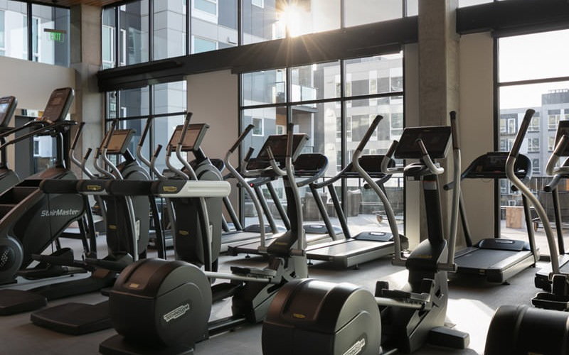 cardio machines face wall of floor-to-ceiling windows in fitness center